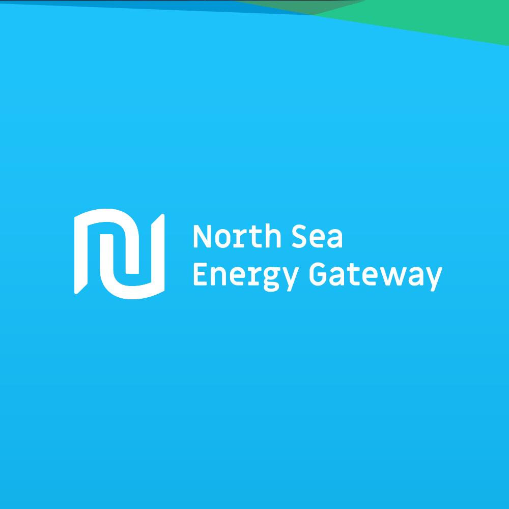 NSEG Logo